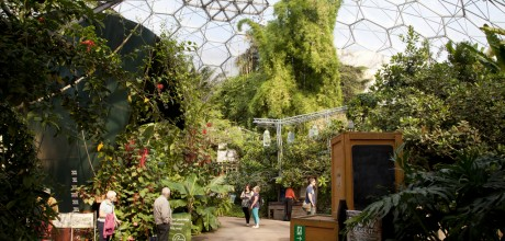 Eden Project, cornwall, things to do cornwall