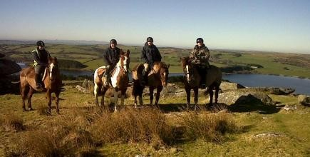 Horse Riding, Liskeard, Lower Tokenbury, things to do in Cornwall